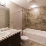 172-APT-201-Bathroom